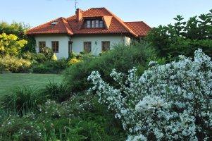 beauty-of-flowers-in-garden